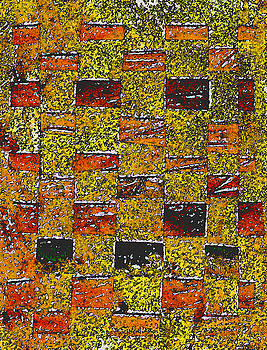 Earths Tapestry by Wayne Potrafka