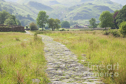 Easedale path to Sour Milk Ghyll by Gavin Dronfield
