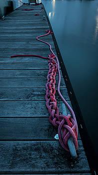 Easily Untangled by Nicole Robinson