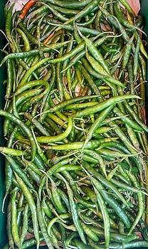 East African Green Chillies by Mudiama Kammoh