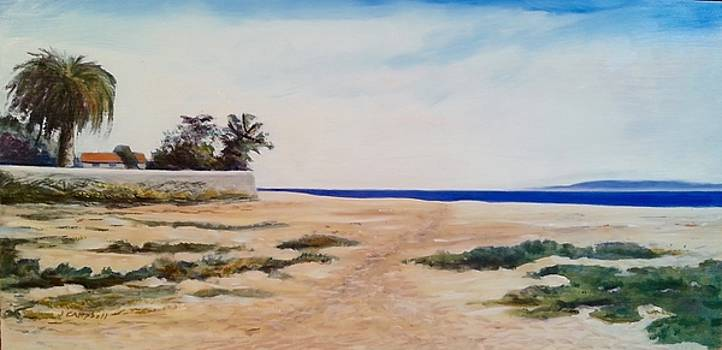 East Beach to Butterfly Beach by Jeffrey Campbell