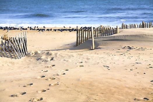 Chuck Kuhn - East Coast Shore