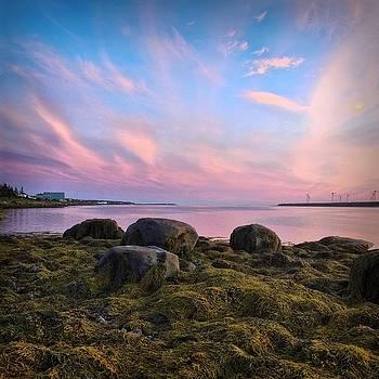 East Coast Sunset 4 by Christine Sharp