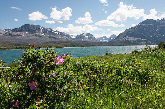 Margaret Pitcher - East Glacier National Park
