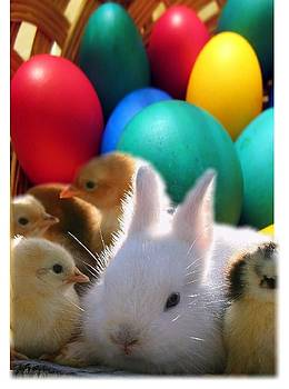 Easter 1 by Cheryl Ehlers