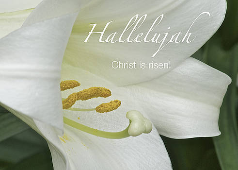 Michael Peychich - Easter Hallelujah