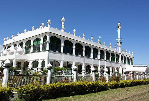 Ramunas Bruzas - Eastern Fiji
