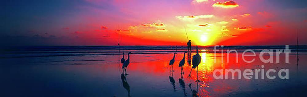 Eastern Florida Surf Fishing At Dawn Birds  2730100298 by Tom Jelen