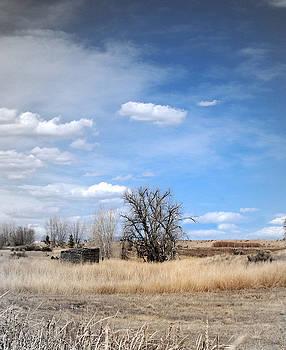 Margaret Fortunato - Eastern Plains of Colorado