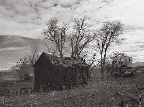 Eastern Sierra Entropy by Joe Schofield