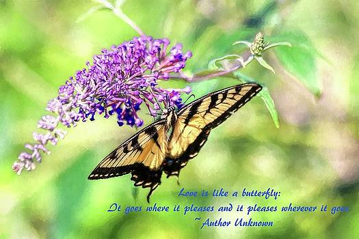 Carol Montoya - Eastern Tiger Swallowtail Painting With Butterfly Quote