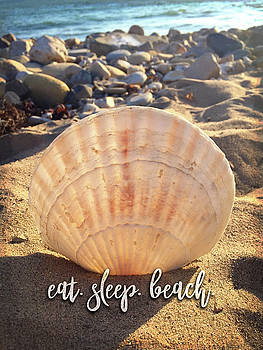 Eat, beach, sleep quote, California sandy beach with seashell by Marcia Luce at Luceworks