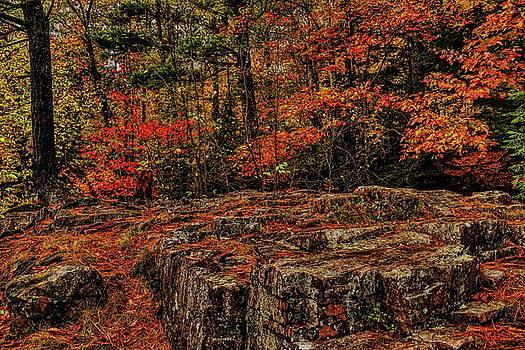 Dale Kauzlaric - Eau Claire Dells In Autumn Colors