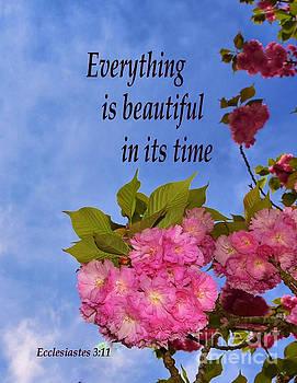 Bob Sample - Beautiful Spring Blossoms
