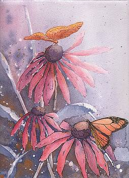 Echinacea and Butterflies by Robynne Hardison