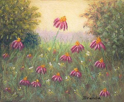 Echinacea by Brenda Maas