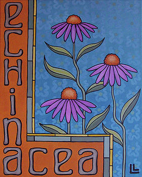 Echinacea by Lindi Levison