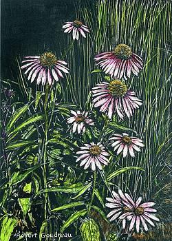 Echinacea by Robert Goudreau