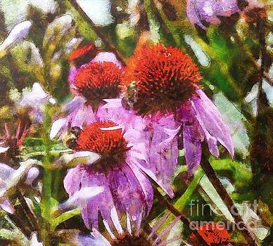 Kathryn Strick - Echinacea Watercolor 2015