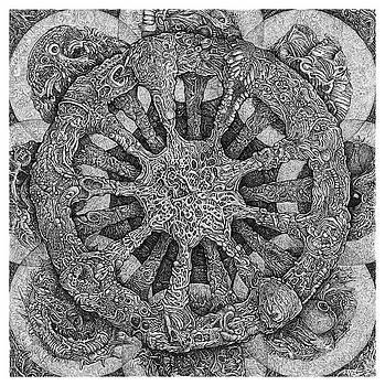 Echinodermatter by Joe MacGown