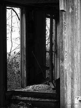 Echoes - Monochrome version by Karen Casey-Smith