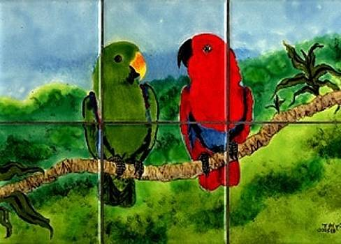 Eclectus Pair by Dy Witt