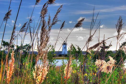 Edgartown Lighthouse - Martha's Vineyard by Joann Vitali