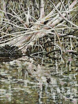 Edge of Smith Lake by Andrea Benson