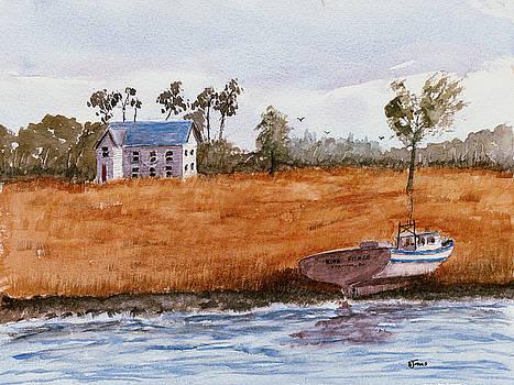 Edge of the Swamp by Barry Jones