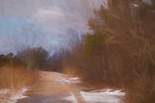 Edge of the Wood by Linda C Johnson