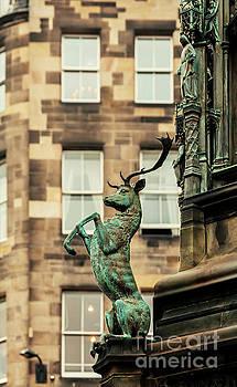 Sophie McAulay - Edinburgh building detail