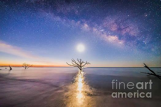 Edisto Island Milky Way by Robert Loe