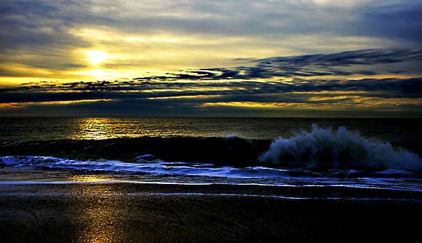 Matthew Winn - Edisto Island Sunset