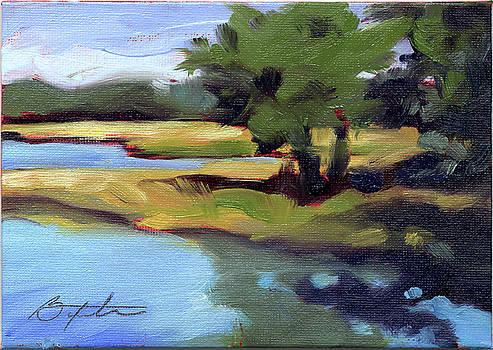 Edisto Marsh by Todd Baxter