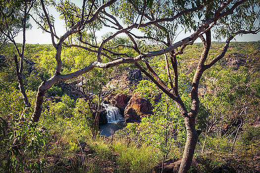 Edith Falls framed between trees, Katherine, Australia by Daniela Constantinescu
