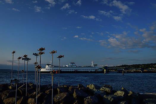 Michael McAuliffe - Edmonds Fish and Ferry