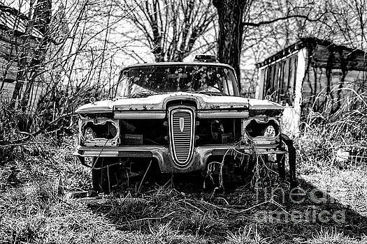 Edsel at Rest by Cara Walton