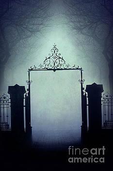 Eerie Gateway In Fog At Night  by Lee Avison