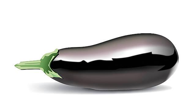 Eggplant by Joe Roselle
