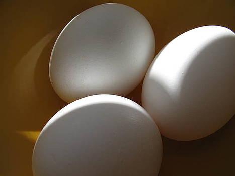 Eggs by Lindie Racz