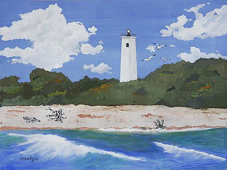 Egmont Lighthouse by John Edebohls