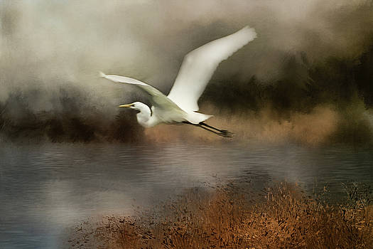 Egret Flight by TnBackroadsPhotos