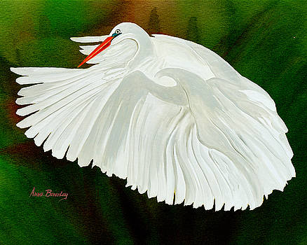 Egret in Flight by Anne Beverley-Stamps