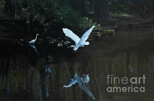 Egret in Flight by Michael Nowak