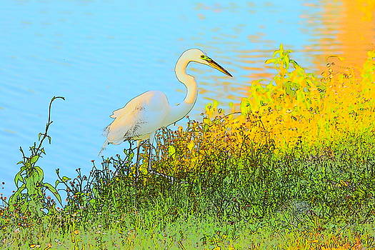 Patricia Twardzik - Egret in the Lake Shallows