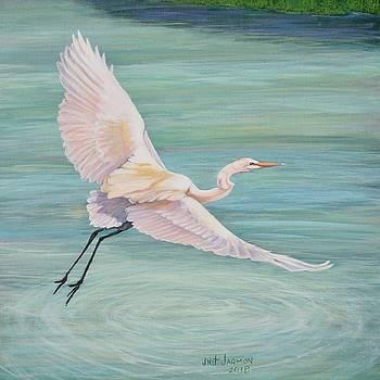 Egret by Jeanette Jarmon