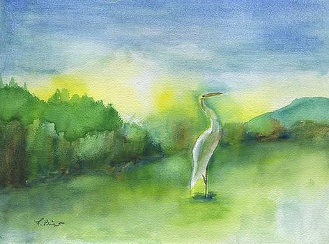 Egret Pose by Frank Bright