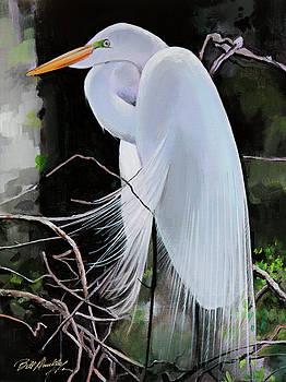 Egret Resting by Bill Dunkley