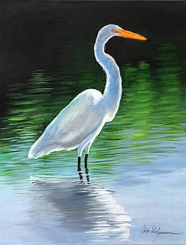 Robert Korhonen - Egret