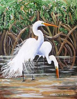 Egrets and Mangroves by Carol Allen Anfinsen